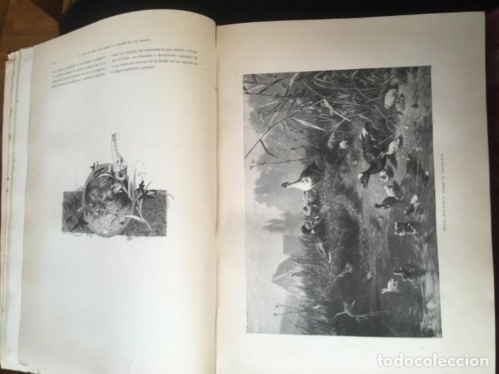 Libros antiguos: LA CAZA EN TODOS LOS PAISES Y A TRAVES DE LOS SIGLOS - CAMPWELL - 1886 - MUY ILUSTRADO - 4 TOMOS - Foto 141 - 155512942