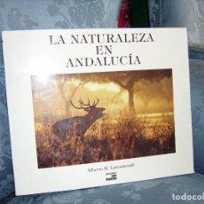 Libros antiguos: LA NATURALEZA EN ANDALUCÍA. ALBERTO R. LARRAMENDI. EDICIONES SAN MARCOS. 2000. Lote 155809986