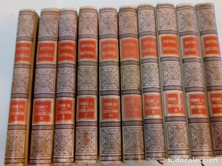 VV.AA HISTORIA NATURAL (10 TOMOS SUELTOS) Y92475 (Old, Rare and Curious Books - Sciences, Manuals and Trades - Other Sciences and Manuals)