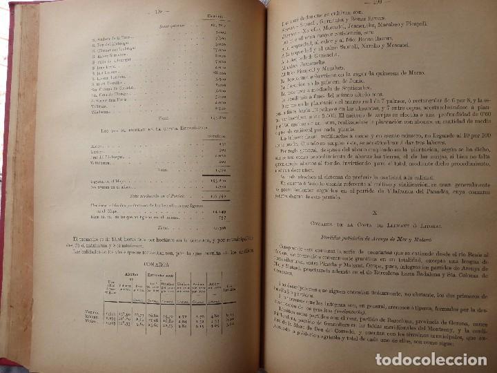 Libros antiguos: L-5306. MEMORIA DEL MAPA REGIONAL VINÍCOLA PROVINCIA DE BARCELONA. AÑO 1890. BILINGÜE. - Foto 6 - 156410098