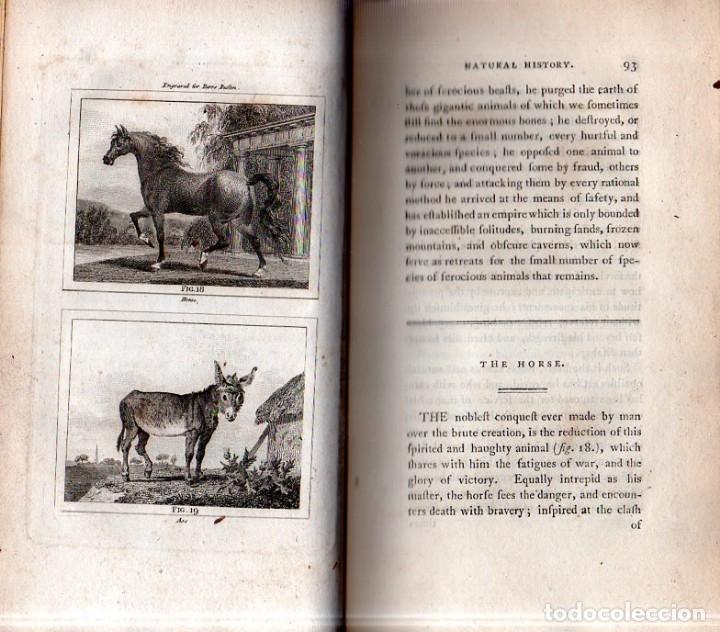 Libros antiguos: BUFFON´S NATURAL HIFTORY. BARR´S BUFFON. A THEORY OF THE EARTH A GENERAL HISTORY OF MAN.1797. VOL. V - Foto 4 - 157225518
