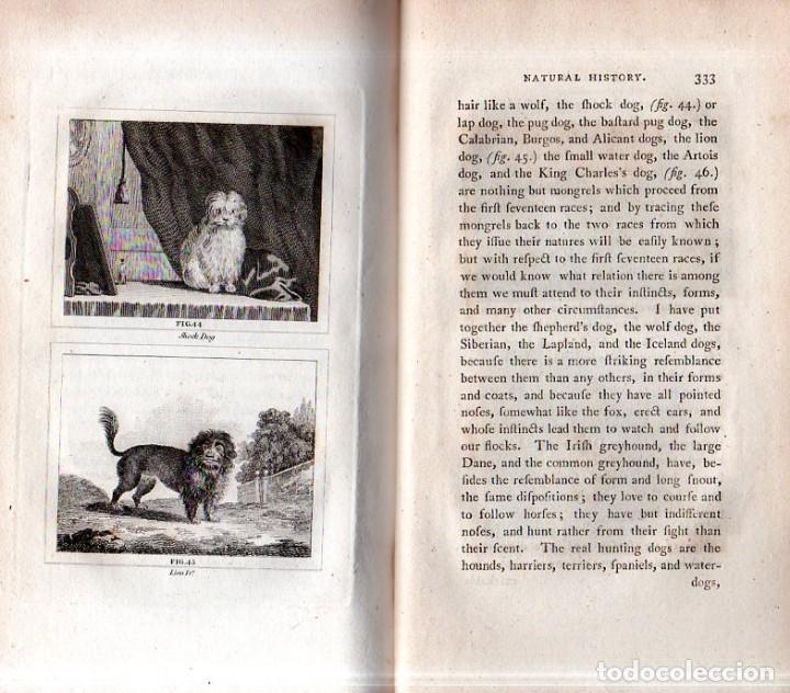 Libros antiguos: BUFFON´S NATURAL HIFTORY. BARR´S BUFFON. A THEORY OF THE EARTH A GENERAL HISTORY OF MAN.1797. VOL. V - Foto 17 - 157225518