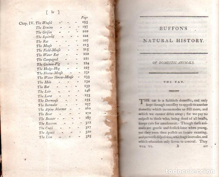 Libros antiguos: BUFFON´S NATURAL HIFTORY. BARR´S BUFFON. A THEORY OF THE EARTH A GENERAL HISTORY OF MAN.1797. VOL VI - Foto 4 - 158026886