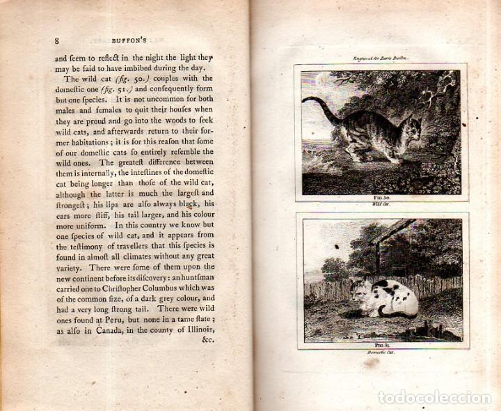 Libros antiguos: BUFFON´S NATURAL HIFTORY. BARR´S BUFFON. A THEORY OF THE EARTH A GENERAL HISTORY OF MAN.1797. VOL VI - Foto 5 - 158026886