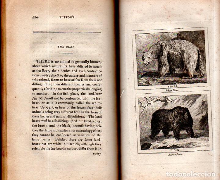 Libros antiguos: BUFFON´S NATURAL HIFTORY. BARR´S BUFFON. A THEORY OF THE EARTH A GENERAL HISTORY OF MAN.1797. VOL VI - Foto 20 - 158026886