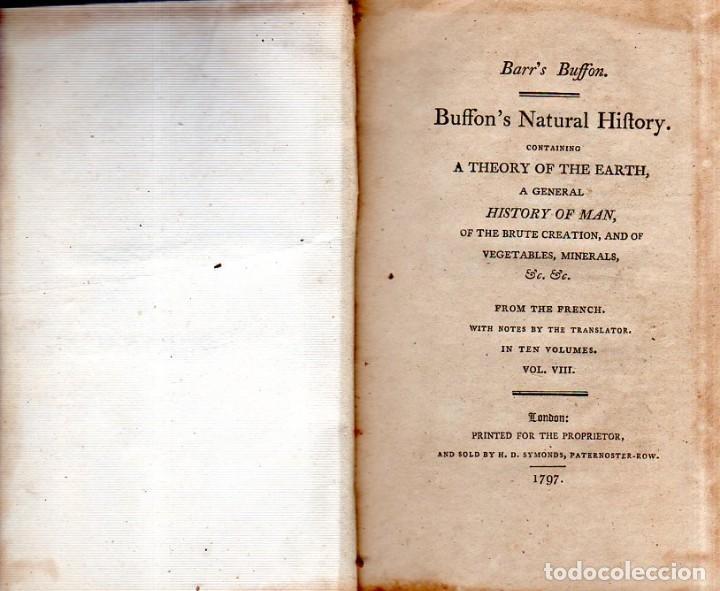Libros antiguos: BUFFON´S NATURAL HIFTORY. BARR´S BUFFON.A THEORY OF THE EARTH A GENERAL HISTORY OF MAN.1797.VOL VIII - Foto 4 - 158033218
