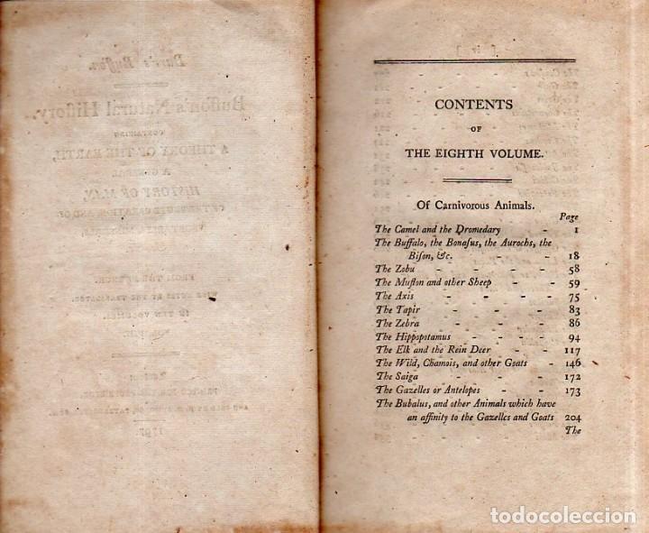 Libros antiguos: BUFFON´S NATURAL HIFTORY. BARR´S BUFFON.A THEORY OF THE EARTH A GENERAL HISTORY OF MAN.1797.VOL VIII - Foto 5 - 158033218