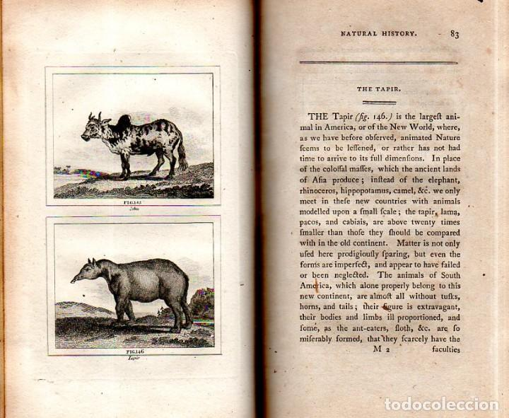 Libros antiguos: BUFFON´S NATURAL HIFTORY. BARR´S BUFFON.A THEORY OF THE EARTH A GENERAL HISTORY OF MAN.1797.VOL VIII - Foto 11 - 158033218