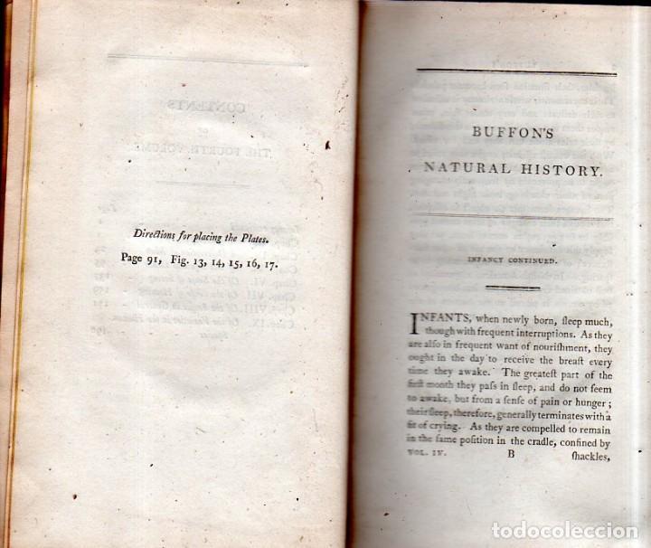 Libros antiguos: BUFFON´S NATURAL HIFTORY. BARR´S BUFFON. A THEORY OF THE EARTH A GENERAL HISTORY OF MAN.1797. VOL IV - Foto 5 - 158039442