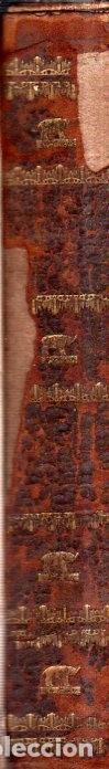 Libros antiguos: BUFFON´S NATURAL HIFTORY. BARR´S BUFFON.A THEORY OF THE EARTH A GENERAL HISTORY OF MAN.1797. VOL VII - Foto 3 - 158200998