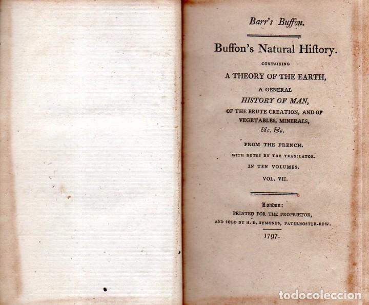 Libros antiguos: BUFFON´S NATURAL HIFTORY. BARR´S BUFFON.A THEORY OF THE EARTH A GENERAL HISTORY OF MAN.1797. VOL VII - Foto 4 - 158200998