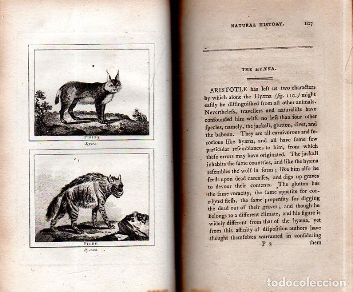 Libros antiguos: BUFFON´S NATURAL HIFTORY. BARR´S BUFFON.A THEORY OF THE EARTH A GENERAL HISTORY OF MAN.1797. VOL VII - Foto 11 - 158200998