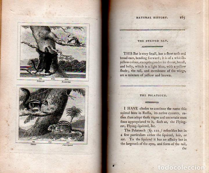 Libros antiguos: BUFFON´S NATURAL HIFTORY. BARR´S BUFFON.A THEORY OF THE EARTH A GENERAL HISTORY OF MAN.1797. VOL VII - Foto 15 - 158200998