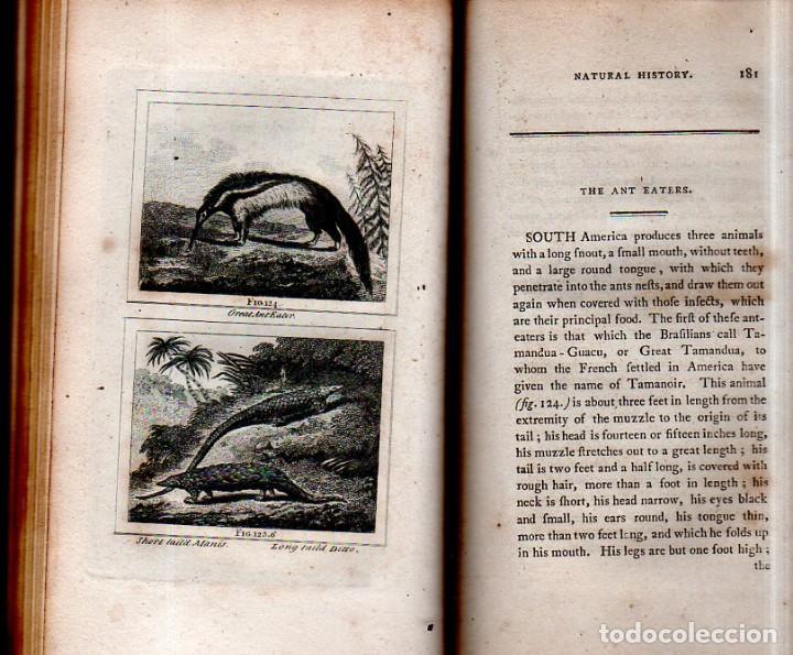 Libros antiguos: BUFFON´S NATURAL HIFTORY. BARR´S BUFFON.A THEORY OF THE EARTH A GENERAL HISTORY OF MAN.1797. VOL VII - Foto 16 - 158200998
