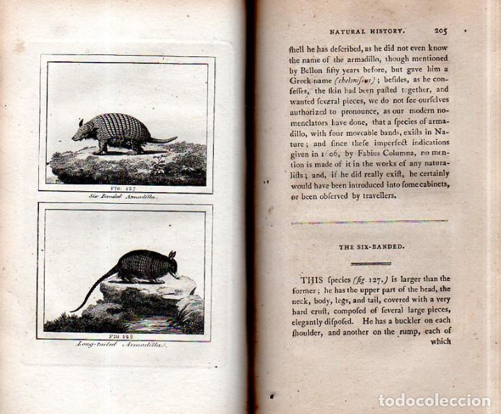 Libros antiguos: BUFFON´S NATURAL HIFTORY. BARR´S BUFFON.A THEORY OF THE EARTH A GENERAL HISTORY OF MAN.1797. VOL VII - Foto 17 - 158200998