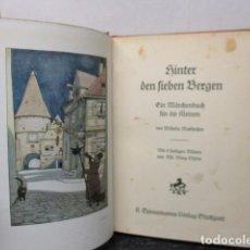 Libros antiguos: HINTER DEN LIEBEN BERGEN - (DETRÁS DE LOS AMANTES BERGEN) 1931 - WILHEM MATTHIEBEN. Lote 159270710