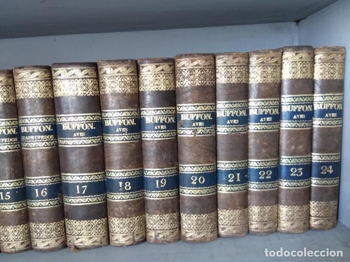 Libros antiguos: OBRAS COMPLETAS DE BUFFON. 30 VOLÚMENES (COMPLETA) 1835 - Foto 3 - 161010294