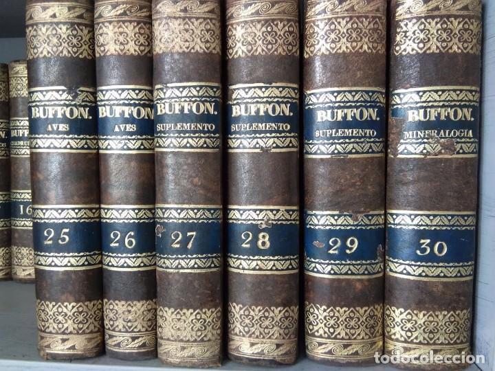 Libros antiguos: OBRAS COMPLETAS DE BUFFON. 30 VOLÚMENES (COMPLETA) 1835 - Foto 4 - 161010294