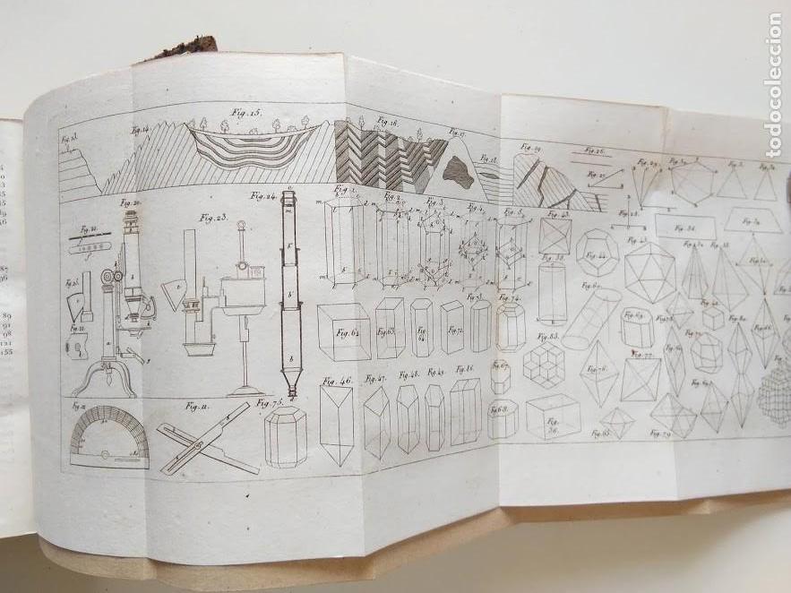 Libros antiguos: OBRAS COMPLETAS DE BUFFON. 30 VOLÚMENES (COMPLETA) 1835 - Foto 7 - 161010294