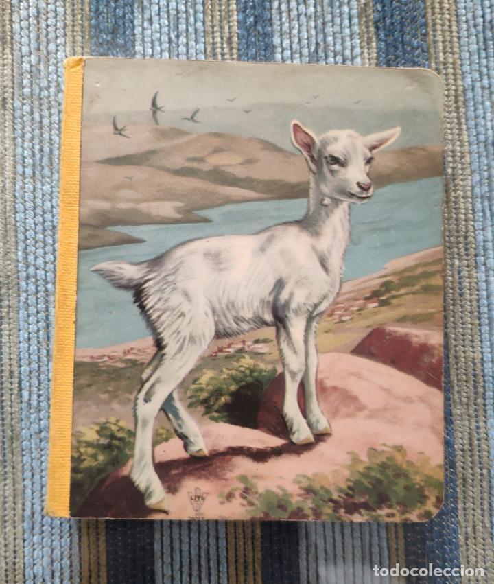 LIBRO INFANTIL DIBUJOS ANIMALES DOMESTICOS (EDITIONS LITO - PARIS AÑOS 50/60) (Libros Antiguos, Raros y Curiosos - Literatura Infantil y Juvenil - Otros)