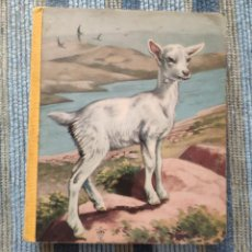 Libros antiguos: LIBRO INFANTIL DIBUJOS ANIMALES DOMESTICOS (EDITIONS LITO - PARIS AÑOS 50/60). Lote 162683198