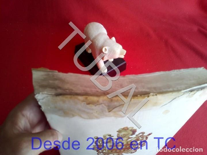 Libros antiguos: TUBAL PERE BENAVENT BARBERA LIBRO - Foto 18 - 167610264