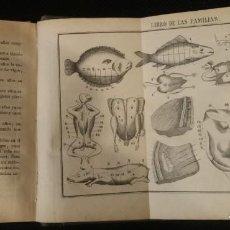 Libros antiguos: LIBRO DE LAS FAMILIAS NOVISIMO MANUAL PRACTICO DE COCINA ESPAÑOLA ,FRANCESA Y AMERICANA. Lote 168486460