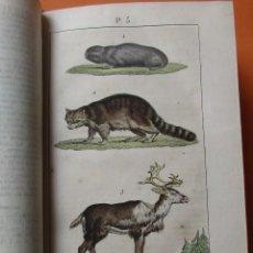 Libros antiguos: NOUVEAU DICTIONNAIRE D´HISTOIRE NATURELLE, APPLIQUÉE AUX ARTS... PARIS. 1819. PIEL LÁMINAS. 576 PÁGI. Lote 168712212