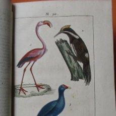 Libros antiguos: NOUVEAU DICTIONNAIRE D´HISTOIRE NATURELLE, APPLIQUÉE AUX ARTS... PARIS. 1819. PIEL LÁMINAS. 568 PÁGI. Lote 168714860