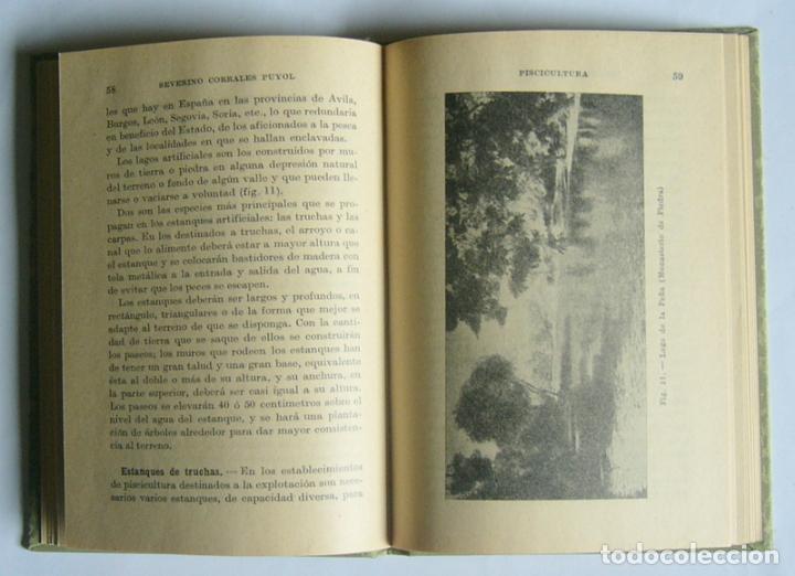 Libros antiguos: NOCIONES DE PISCICULTURA DE AGUA DULCE - SEVERINO CORRALES PUYOL - MANUALES GALLACH. 1936 - Foto 3 - 169842040