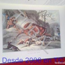 Libros antiguos: TUBAL ANECDOTAS RELATOS Y ESCENAS DE CAZA CINEGETICA BIBLIOFILIA GUILLERMO BLAZQUEZ LIBRO ENORME. Lote 170939130