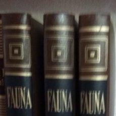 Libros antiguos: FAUNA DE SALVAT. Lote 173908708
