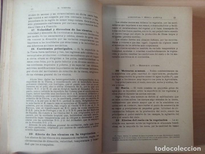 Libros antiguos: NOCIONES DE AGRICULTURA Y TÉCNICA AGRÍCOLA (1922) - DOCTOR MARIANO TORTOSA Y PICÓN - Foto 9 - 174233785