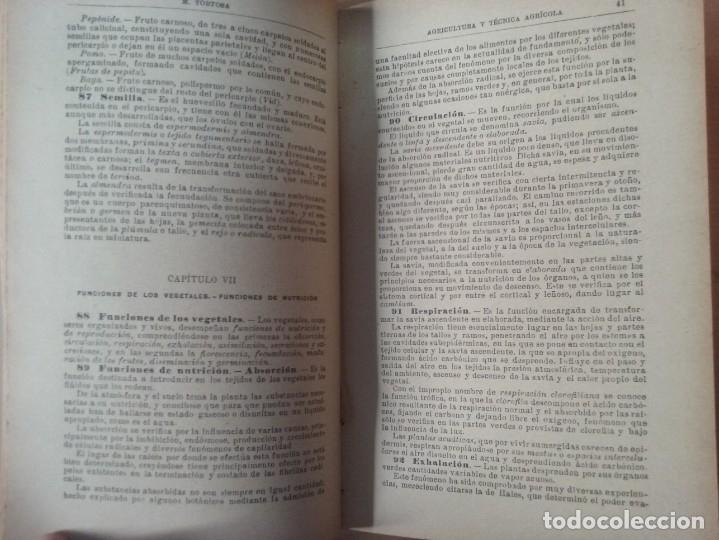 Libros antiguos: NOCIONES DE AGRICULTURA Y TÉCNICA AGRÍCOLA (1922) - DOCTOR MARIANO TORTOSA Y PICÓN - Foto 10 - 174233785