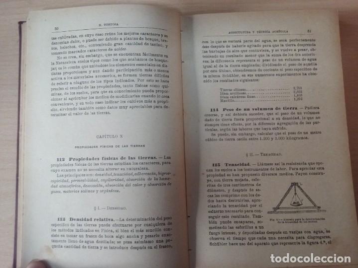 Libros antiguos: NOCIONES DE AGRICULTURA Y TÉCNICA AGRÍCOLA (1922) - DOCTOR MARIANO TORTOSA Y PICÓN - Foto 12 - 174233785