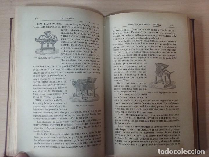 Libros antiguos: NOCIONES DE AGRICULTURA Y TÉCNICA AGRÍCOLA (1922) - DOCTOR MARIANO TORTOSA Y PICÓN - Foto 17 - 174233785
