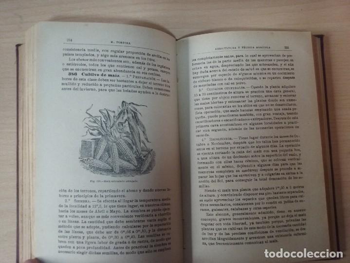 Libros antiguos: NOCIONES DE AGRICULTURA Y TÉCNICA AGRÍCOLA (1922) - DOCTOR MARIANO TORTOSA Y PICÓN - Foto 18 - 174233785