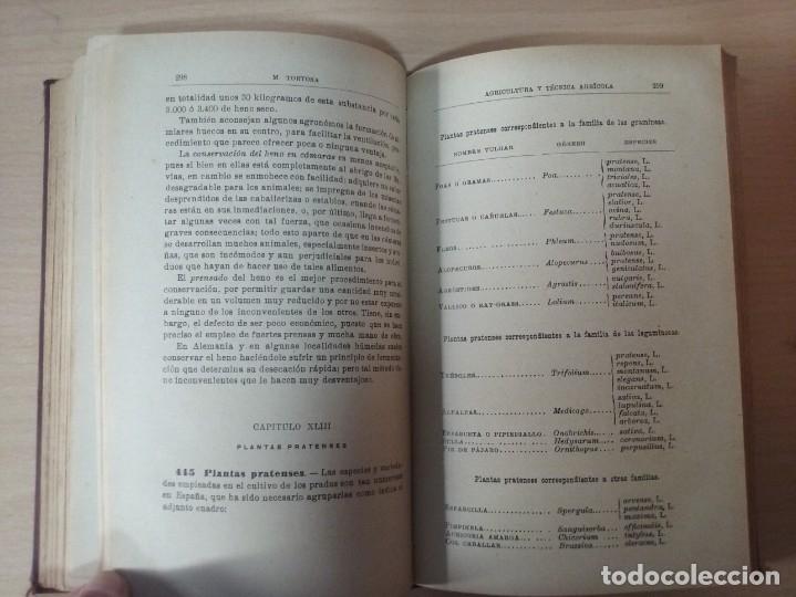 Libros antiguos: NOCIONES DE AGRICULTURA Y TÉCNICA AGRÍCOLA (1922) - DOCTOR MARIANO TORTOSA Y PICÓN - Foto 19 - 174233785