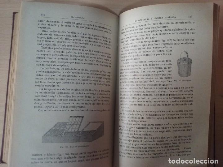 Libros antiguos: NOCIONES DE AGRICULTURA Y TÉCNICA AGRÍCOLA (1922) - DOCTOR MARIANO TORTOSA Y PICÓN - Foto 20 - 174233785