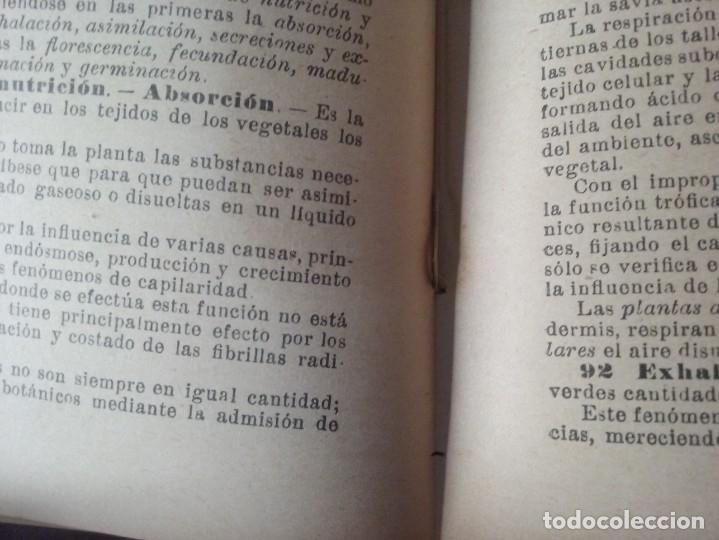 Libros antiguos: NOCIONES DE AGRICULTURA Y TÉCNICA AGRÍCOLA (1922) - DOCTOR MARIANO TORTOSA Y PICÓN - Foto 24 - 174233785