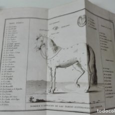 Libros antiguos: TACTICAS DE CABALLERIA SIGLO XVIII CON 73 LAMINAS. Lote 174979118