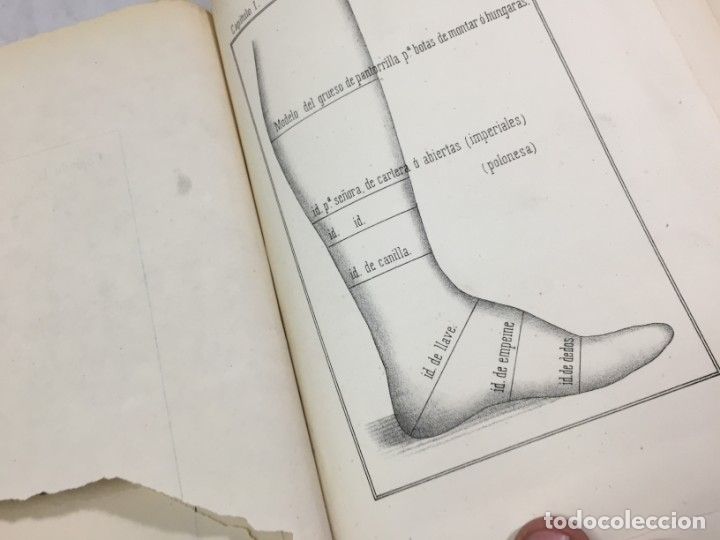 Libros antiguos: Guía teórico practica para fabricante de calzado y hormas Madrid 1878 Láminas desplegables patron - Foto 10 - 175868287