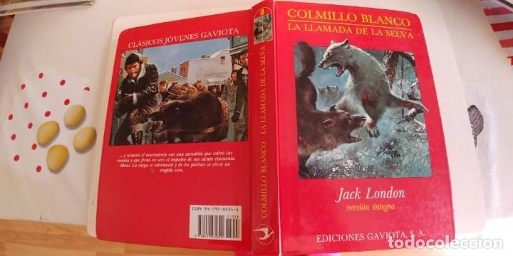 COLMILLO BLANCO. LA LLAMADA DE LA SELVA. VERSIÓN ÍNTEGRA. MADRID, GAVIOTA, 1989 (Libros Antiguos, Raros y Curiosos - Literatura Infantil y Juvenil - Otros)
