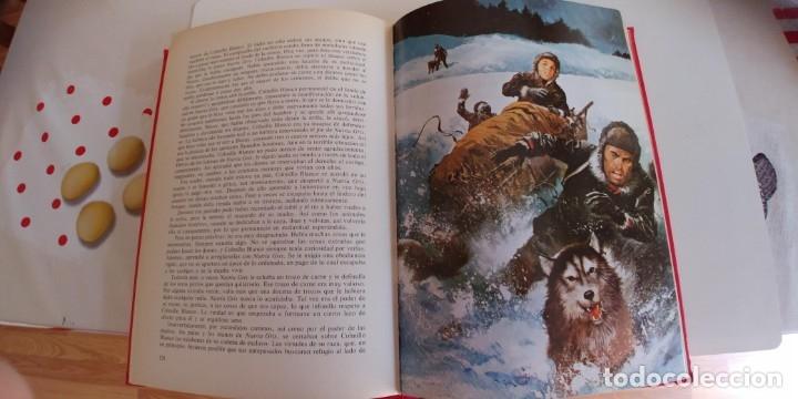 Libros antiguos: Colmillo blanco. La llamada de la selva. Versión íntegra. Madrid, Gaviota, 1989 - Foto 3 - 176206919