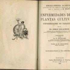 Libros antiguos: ENFERMEDADES DE LAS PLANTAS CULTIVADAS. ENFERMEDADES NO PARASITARIAS: POR JORGE DELACROIX. Lote 176895449