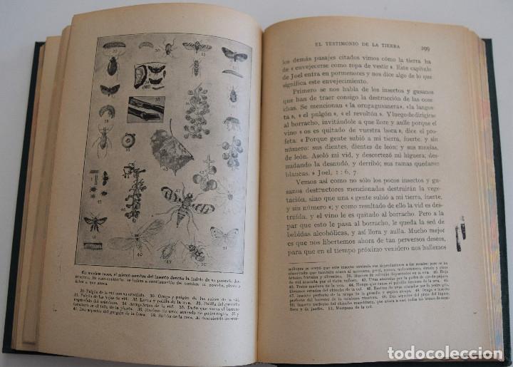 Libros antiguos: HERALDOS DEL PORVENIR - POR ASA OSCAR TAIT - SOCIEDAD INTERNACIONAL DE TRATADOS 1919 - Foto 6 - 177588335