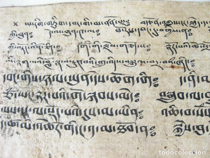 Libros antiguos: ANTIGUO MANUSCRITO BUDISTA TIBETANO ESCRITO EN INDÚ - Foto 7 - 178030287