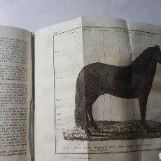 Libros antiguos: ROZIER CURSO DICCIONARIO AGRICULTURA. TOMO IV, 1799. CABALLO CABRA BUEY BOTANICA.. GRABADOS. PIEL.. Lote 178115707