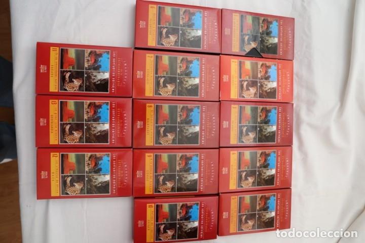 Libros antiguos: ENCICLOPEDIA 30 TOMOS, NUEVA -ATLAS DE LO EXTRAORDINARIO- EDICIONES DEL PRADO,MAS 13 VIDEOS COMPLETA - Foto 23 - 178287745