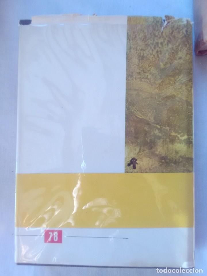 Libros antiguos: Don Camilo - Giovanni Guareschi - 1ª Edicion de 1963. - Foto 2 - 178993627